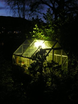 greenhouse ~ in the fields