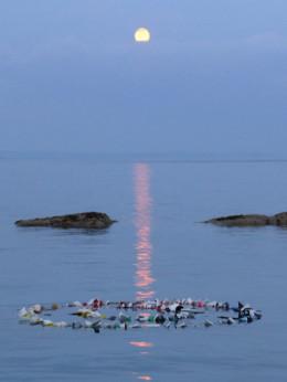 floating stones in the moonlight (photo: Ken Cockburn)
